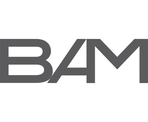 BAM zona 10